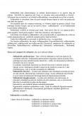 Imagine document Sulfamide