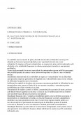 Imagine document Standingul Financiar al Sc Porterom Srl