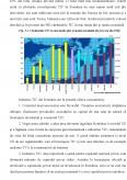 Imagine document Importanta comertului electronic in plan global