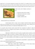 Planul de afaceri al firmei producatoare de melci