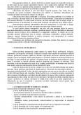 Imagine document Sistemul decizional