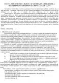 Imagine document Testul sociometric, mijloc si metoda de optimizare a relatiilor interpersonale din clasa de elevi