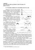 Imagine document Multiplexarea si demultiplexarea in frecventa