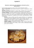Imagine document Tehnologia de obtinere a foii de placinta romaneasca