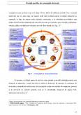 Imagine document Comertul electronic