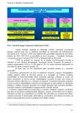 Managementul Proiectului cu Finantare Europeana