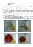 Imagine document Aspecte privind potentialul antibacterian si antifungic al produselor apicole