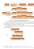 Aplicatii ale strategiilor de distributie a marfurilor in cadrul unei societati