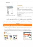 Aspecte privind publicitatea. Studiu de caz privind publicitatea online