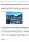 Obiective turistice naturale ale judetului Neamt. Studiu de caz al agentiei de turism