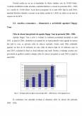 Imagine document Analiza economico financiara a activitatii agentiei Happy Tour