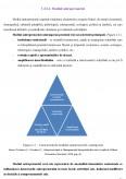 Imagine document Managementul imm-urilor