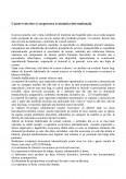 Imagine document Comert Exterior si Cooperarea Economica Internationala