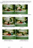 Kinetoterapia in Afectiuni Respiratorii