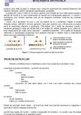 Limbaje de Programare Utilizate in Inteligenta Artificiala