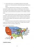Monografia Sistemului Bancar al Statelor Unite ale Americii