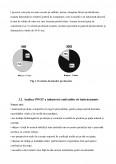 Plan de Afacere - Producerea si Comercializarea Vestimentatiei Textile pentru Femei