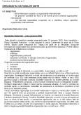 Organizatii si Relatii Internationale