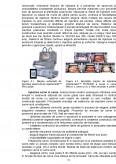 Tehnologii Generale - Tehnologie si Control in Indutria Carnii