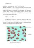 Sangele - Structura si Functiile Celulelor Sangvine