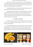 Imagine document Valorificarea produselor si subproduselor de tomate - Ketchup-ul
