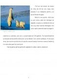 Imagine document Comportamenul de vanatoare, sexual si parental la Ursul Polar
