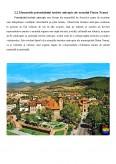 Imagine document Potentialul turistic al Judetului Neamt