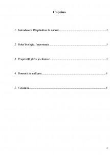 Pagina 2